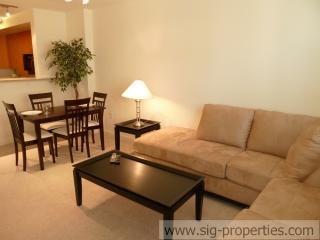 Great 1 BD in Penn Quarter(138) - District of Columbia vacation rentals