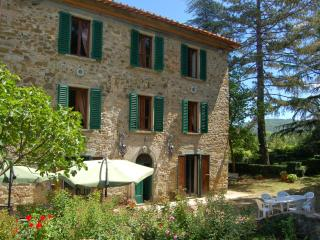 9 bedroom Villa in Bucine, Siena and surroundings, Tuscany, Italy : ref 2294114 - Badia Agnano vacation rentals