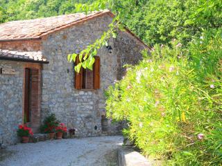 1 bedroom Condo with Deck in Montieri - Montieri vacation rentals