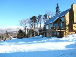 Saddleback Mountain On Slopes 3-4BR Ski-in Condo - Eustis vacation rentals