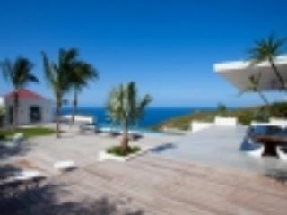 Villa Palm Springs St Barts Vacation Villa - Image 1 - Saint Barthelemy - rentals