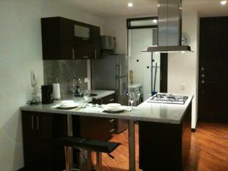 Tivoli 311 - Parque 93 - Bogota vacation rentals