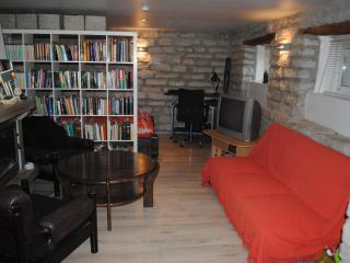 Downtown studio ap. with fireplace and sauna - Tallinn vacation rentals