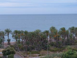 Aguadulce Beach,Almería,Penthouse Spectacular view - Aguadulce vacation rentals