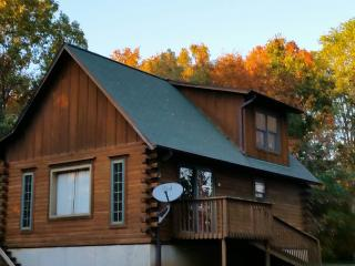 Abe's Log Cabin - Illinois vacation rentals