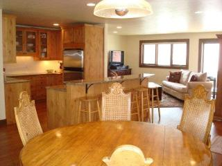Newly remodeled 3 bedroom townhouse in East Vail. Nestled in high alpine setting with mountain views and East Vail terrain. - Vail vacation rentals
