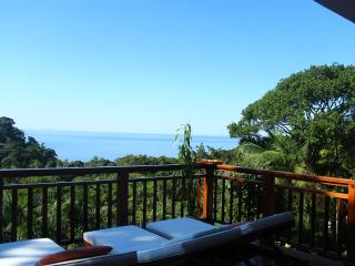 Beautiful house with ocean view and rain forest - Guaruja vacation rentals