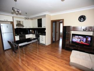 Beautiful Condo with Internet Access and A/C - Antalya vacation rentals