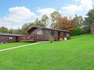 LANDSKER VIEW, traditional cedar lodge, single-storey, enclosed decked area, off road parking, near Narberth, Ref 917326 - Narberth vacation rentals