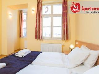 2 bedroom apartment in central location of Prague - Bohemia vacation rentals