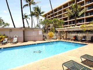 1 bedroom House with DVD Player in Kihei - Kihei vacation rentals