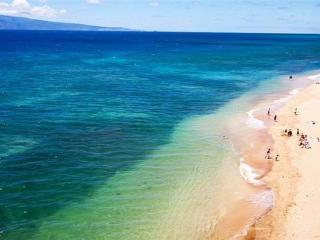 Junior Suite Oceanfront #707 ~ RA48822 - Kaanapali vacation rentals