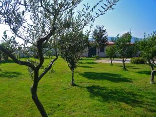 Cottage in the Circeo National Park - San Felice Circeo vacation rentals