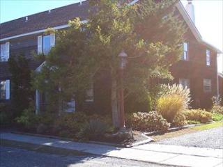 Parsons Folly 33233 - New Jersey vacation rentals