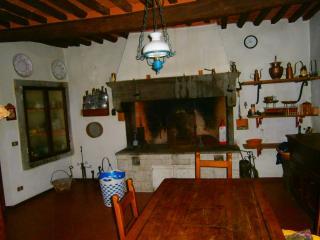 """VILLA """"IL LECCIO"""" - casa padronale storica - Vinci vacation rentals"""