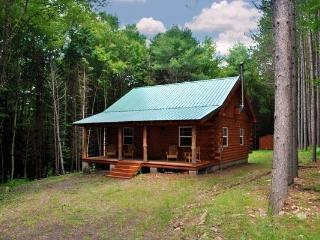 Secluded New Built Log Cabin! Near Cooperstown - Roxbury vacation rentals