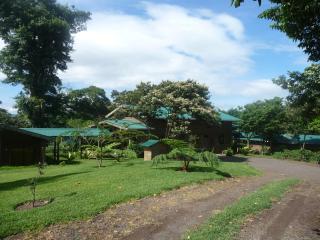 Santa Isabel's Mountain Lodge, a charming home and coffee farm - Matagalpa vacation rentals