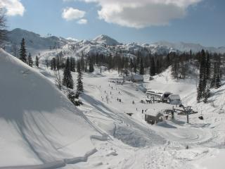 Holiday home Markež in Bohinj - Bohinjska Bistrica vacation rentals