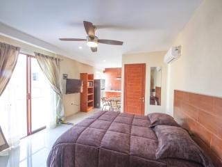 Perfect 1 bedroom Veracruz Condo with Deck - Veracruz vacation rentals