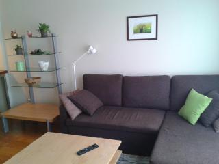 Tartu mnt 16b ap 17, 1BDRM - Estonia vacation rentals