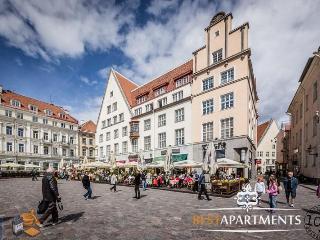 Comfortable 2 bedroom House in Tallinn - Tallinn vacation rentals