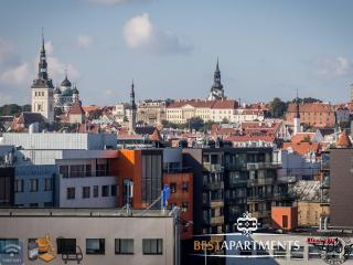 Jõe 7 - 2 BDRM with amazing view - Estonia vacation rentals