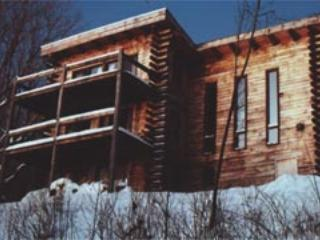 Vermont Log Home On 21 Acres Btwn Okemo/killington - Ludlow vacation rentals