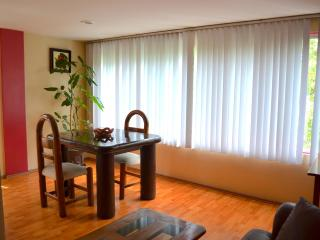 Cozy apartment in Mexico City - Mexico City vacation rentals
