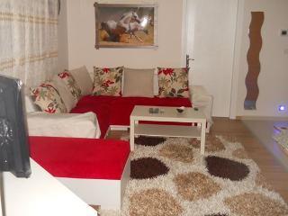 RedHouse (Luxury Rent house) - Oeren vacation rentals