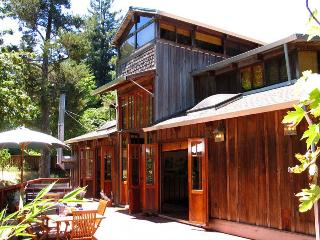 ARTISAN HOUSE - Russian River vacation rentals