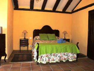 Little country house in La Orotava - La Orotava vacation rentals