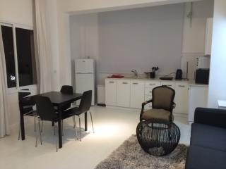 Idelson Delux Apartment 7 - Tel Aviv vacation rentals