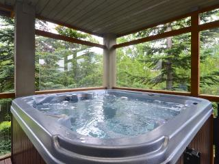 Huge Private Hot Tub - Village location - sleeps 6 - Whistler vacation rentals