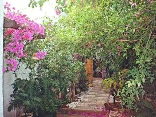 Unique Vacation  unit  center of Israel - Kfar Saba vacation rentals