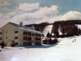 Trailside Condo Mt. Snow VT Avail.3/6-3/7@$750 - Southeastern Vermont vacation rentals