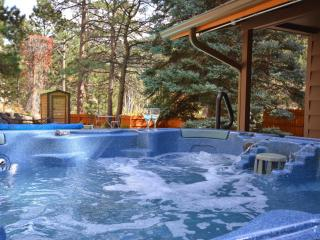 Big Thompson Pool Cabin - Rustic  Private Fishing - Estes Park vacation rentals