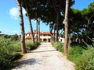 Villa Olympia - Windows On Italy - San Vincenzo vacation rentals