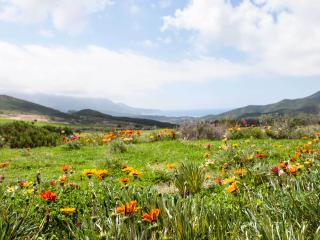 Charming Buggerru Finca rental with Mountain Views - Buggerru vacation rentals
