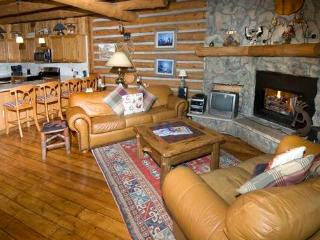 Beautiful 2 bedroom Apartment in Vail - Vail vacation rentals