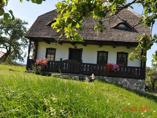 2 bedroom Cottage with Internet Access in Bran - Bran vacation rentals