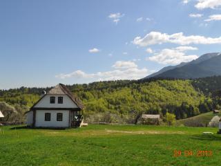 Cozy 2 bedroom Bran Cottage with Internet Access - Bran vacation rentals