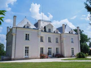 Romance and Elegance - Chateau du Breil - La Haie-Fouassiere vacation rentals