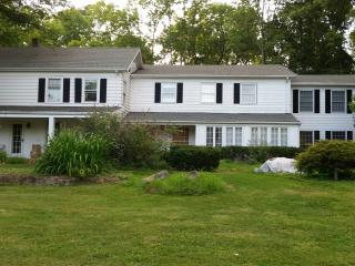GORGEOUS HOME...Private & Secluded - Annandale vacation rentals