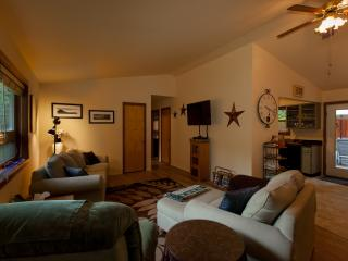 Cozy 3 bedroom House in Mount Shasta - Mount Shasta vacation rentals
