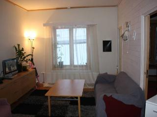 Cozy 3 bedroom Apartment in Finnmark - Finnmark vacation rentals