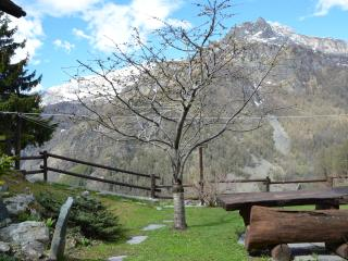 Charming Condo in Valtournenche with Garden, sleeps 3 - Valtournenche vacation rentals