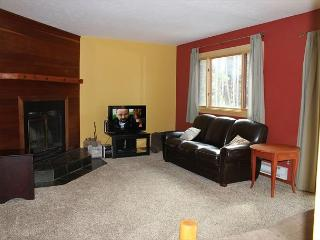 WW6730 Condo w/ Wifi, Fireplace, Pet Friendly - Silverthorne vacation rentals