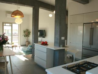 Stylish, spacious ingeniously redesigned and renov - Gedera vacation rentals