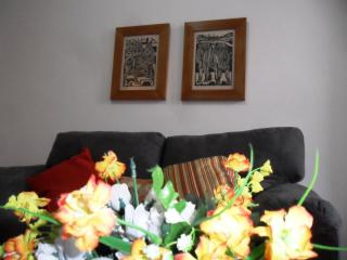 Comfortable 1 Bedroom & Living Room In A Safe Area - Rio de Janeiro vacation rentals