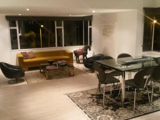 Perfect Condo with Internet Access and Dishwasher - Bogota vacation rentals